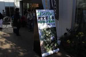 「ガンバレ!老犬写心展」In代官山T-site Garden Gallery